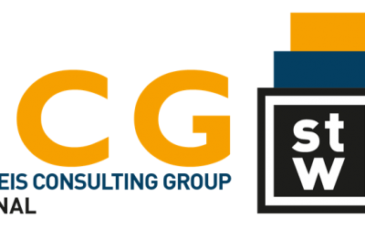 Die Steinbeis Consulting Group